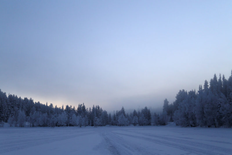 Finnland-Winter: See und Wald und Tageslicht