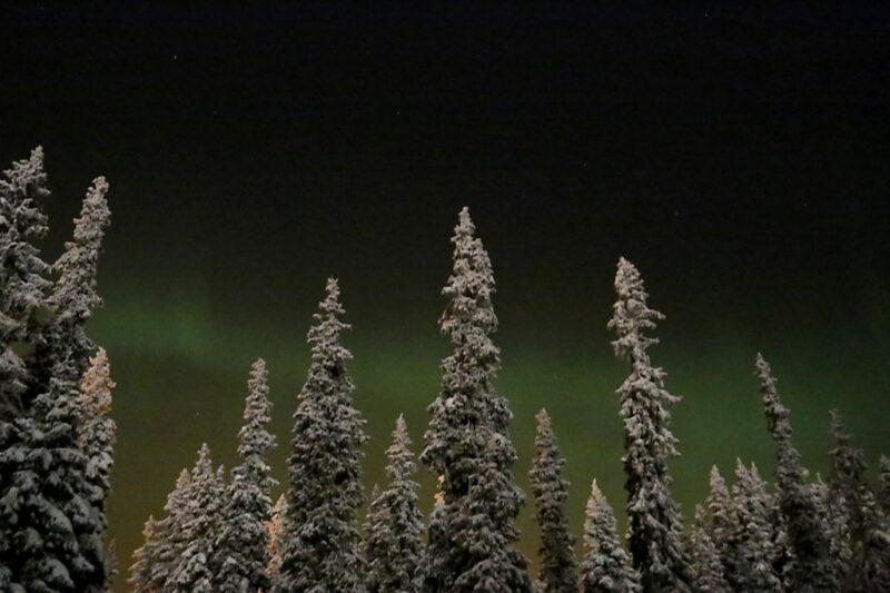 Finnland: Nordlichter im Wald bei Ruka, Kuusamo