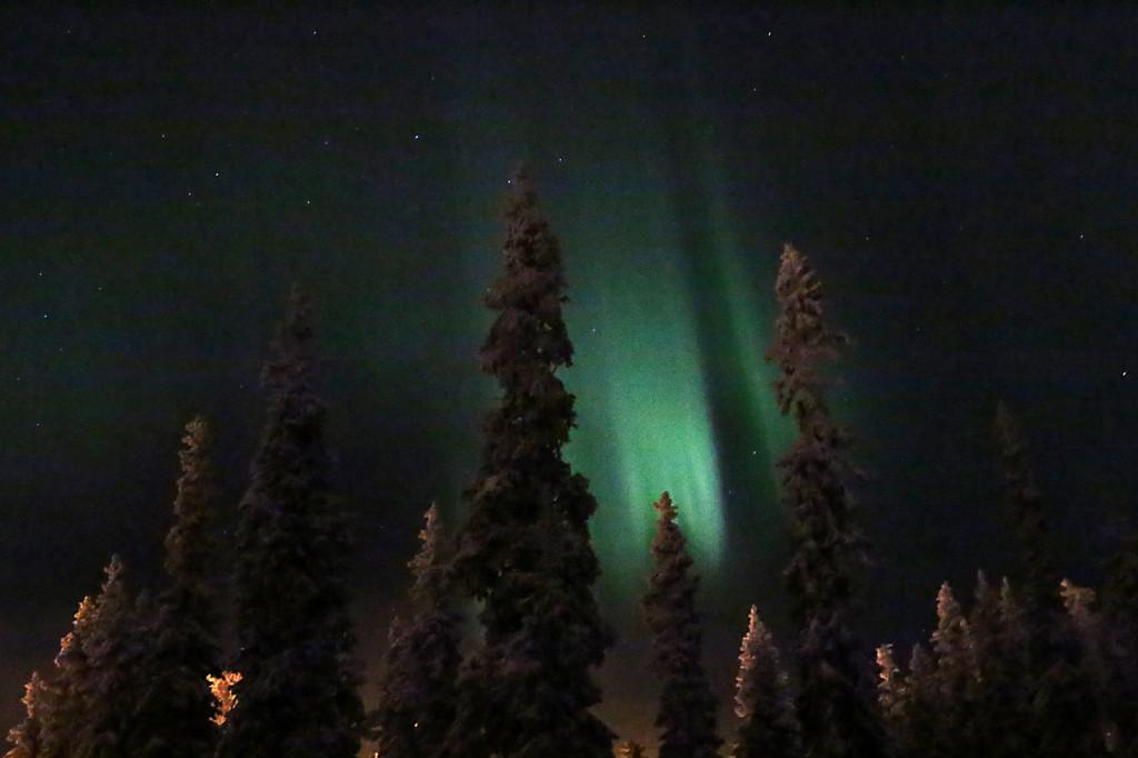 Finnland: Nordlichter aurora-borealis im Wald