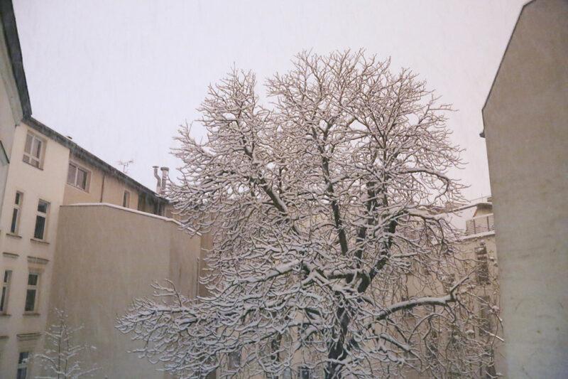 Berlin Winter: erster Schnee