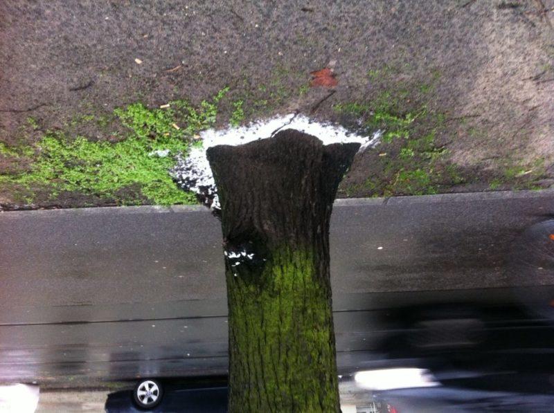 Berlin-Winter: wenig Schnee