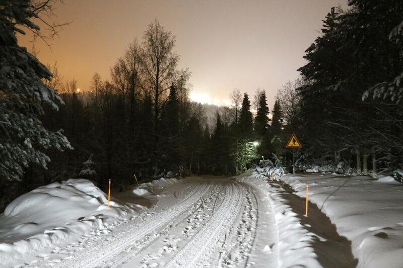 Winter Wald Spaziergang im Schnee, Finnland